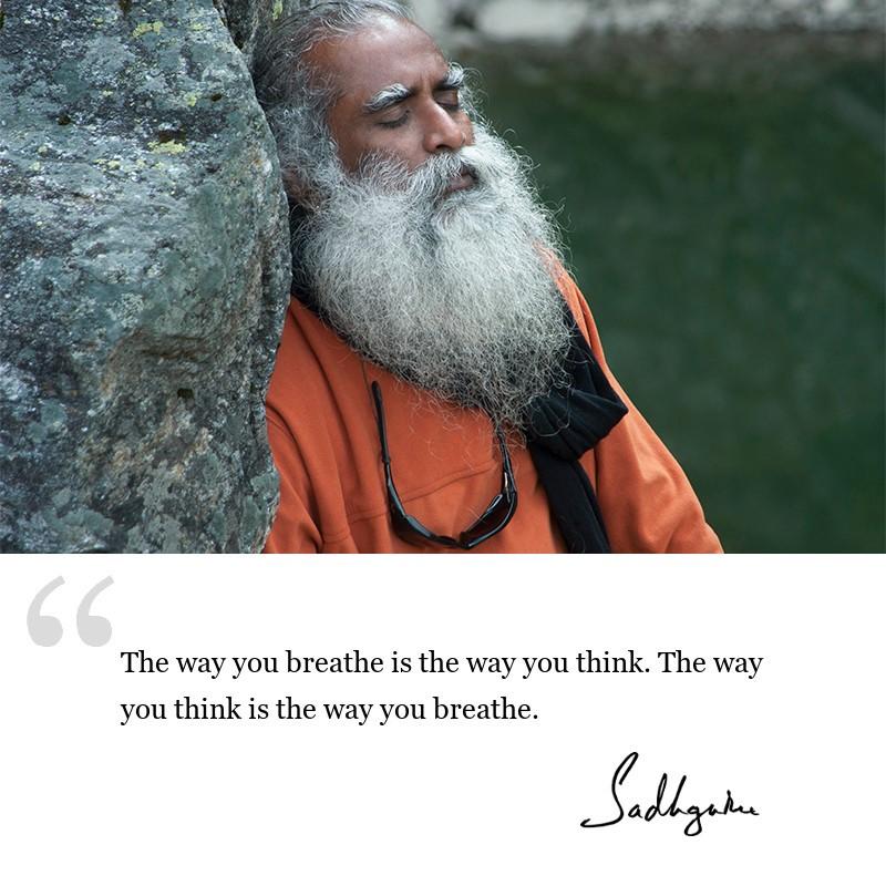 sadhguru quote on yogic wisdom.