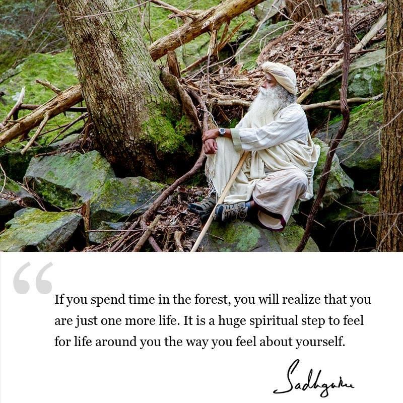 sadhguru quote on wisdom for seekers, sadhguru quote on inclusiveness, sadhguru quote on spiritual growth.
