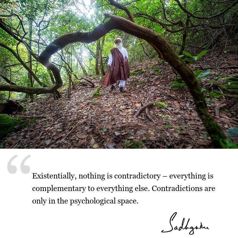 sadhguru quote on wisdom for seekers, sadhguru quote on life lessons.